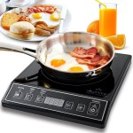 Best Portable Induction Cooktop of 2015